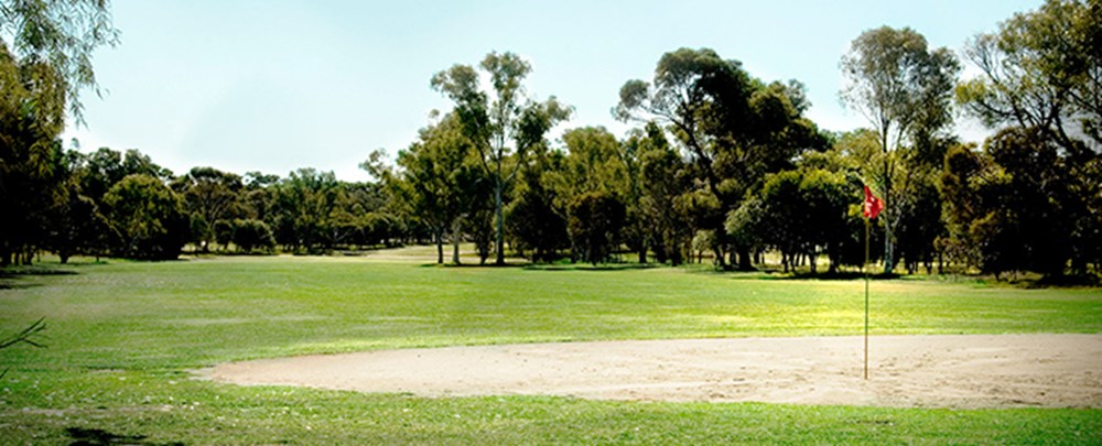 Picture: Golf Course Green